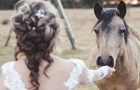 imperfect perfection farm country wedding venue